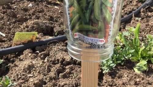 Garden Markers – 5 Options
