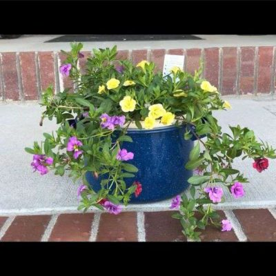 I used an old pot and added some flowers in it for my front porch.