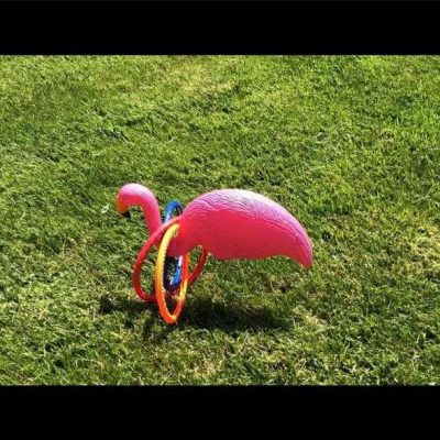 The goal is to toss the ring around the flamingo's neck.