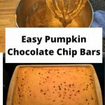 Honestly, I'm a pumpkin crazy person! I love pumpkins, pumpkin spice, and pumpkin food! This is my favorite pumpkin bar recipe. Why? Because it's easy and we think it's delicious! Healthy enough for breakfast and snack times too!