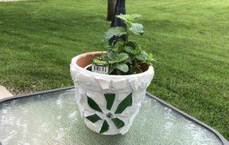 Mosaic Terra Cotta Flower Pots
