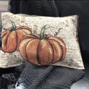 What I love about this project is that you could create these for ever season. You can remove the stuffing from one pillow and put it in the new one. This will also make storing the pillow covers super easy as they'll be flat.
