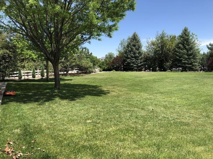 Here's a picture of our yard. It's a big lot and it always needs work - don't they all? We have fescue grass which is better in our dry Colorado environment. Plus wait until you see the new Worx Landroid mower we got - it's a robot and saves us a ton of time! We started by staking the wire around the perimeter of our yard for our mower so it knows where to stop.