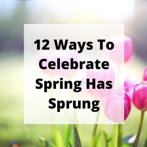 What does the term spring has sprung mean? It means the end of winter, and things start growing like grass, flowers, and new life.