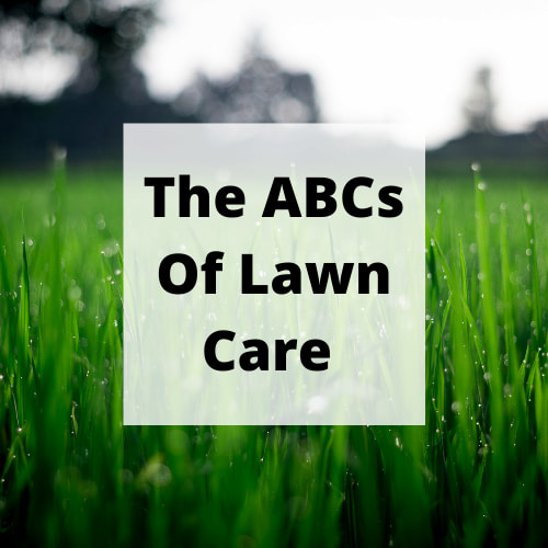 Do you want to know some lawn care tips? When used to its full potential, the backyard can quickly establish itself as your happy place. Sadly, very few homeowners achieve this goal because they overcomplicate the situation. Frankly, the process can be made very simple by focusing on your ABCs.