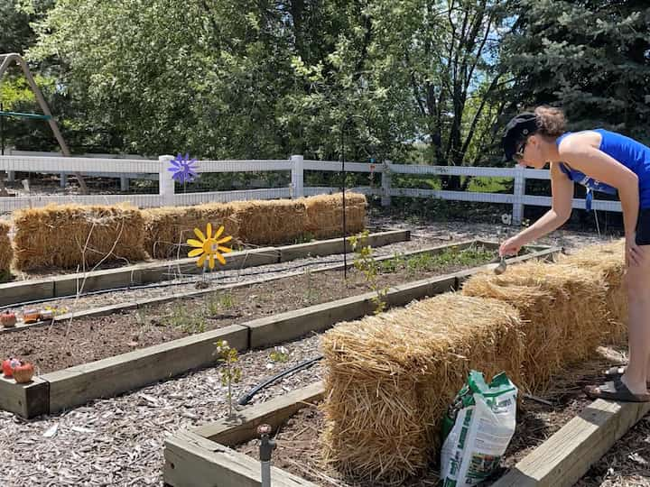 HERE ARE THE INSTRUCTIONS FOR PLANTING YOUR VEGETABLE GARDEN