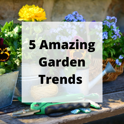 Now that the summertime has begun, you'll want to get your garden looking beautiful. There are plenty of garden trends to follow this year, so let's explore some of your best options.