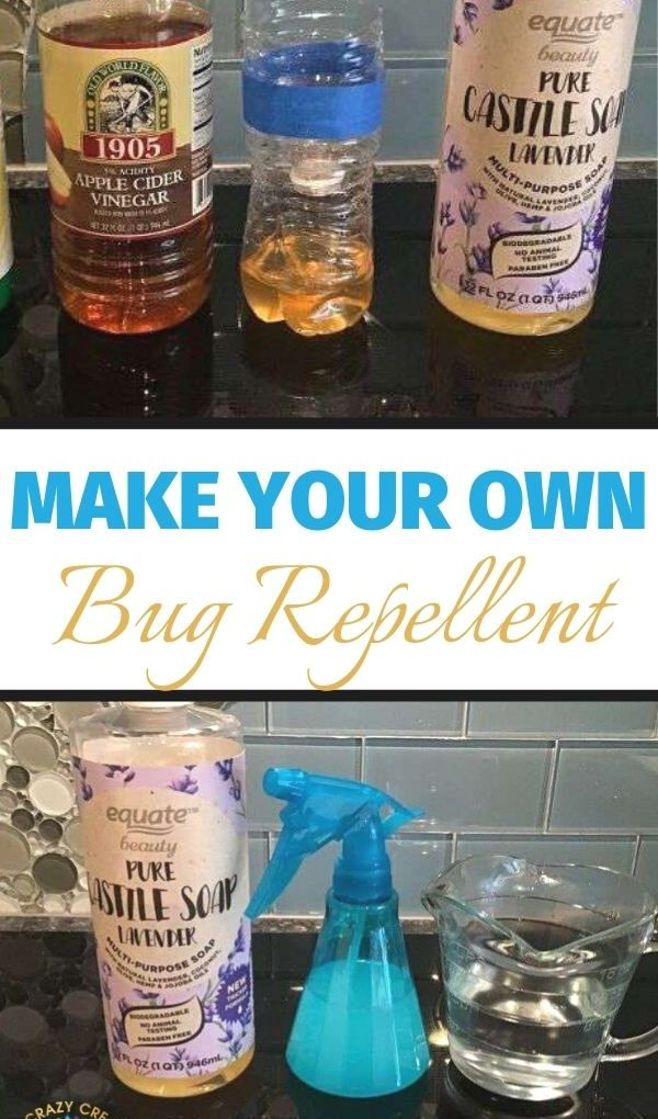 Make your own DIY bug repellents and traps for an inexpensive alternative to store bought products.