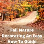 How can I decorate for fall cheap? I'm going to share my easy guide where you can decorate for almost free using fall nature.