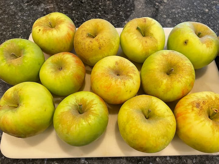 Ingredients needed for applesauce and apple puree
