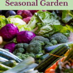 Have you wondered what it takes to grow a seasonal garden? I'm sharing the actual truth and reality of what my journey was this summer.